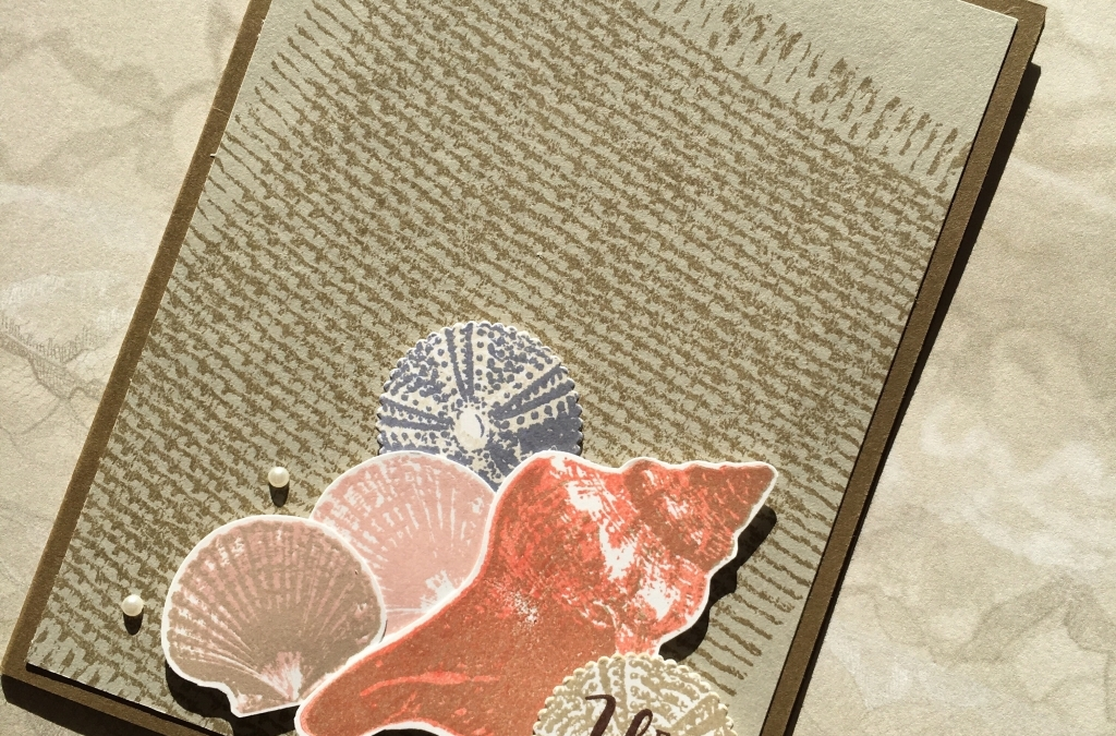 So Many Shells Displayed On A Burlap Mat