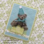 Celebration Time Baby Bear