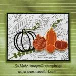 Pick A Pumpkin for Thanksgiving
