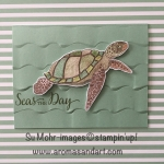 Sea Turtle Birthday Greeting