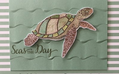 By Su Mohr for Paper Players 358; Featuring: Just Add Color, Ruffled embossing folder, So Many Shells, Watercolor Pencils; For more details click through to my blog! #justaddcolor #seaturtles #Hawaii #seastheday #birthdaycard #somanyshells