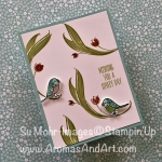 Bird Banter and Lovely Wishes Occasions 2018 Sneak Peek and Stamparatus