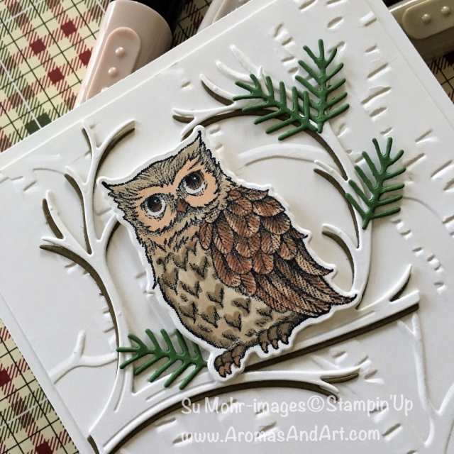 By Su Mohr for cts284; Click READ to go to my blog for details! Featuring: Still Night, Woodland embossing folder, Stampin' Blends, owls, Holiday sneak peek, handmade cards, Stampin' Up!; #stillnight #stillnightowl #woodland #sneakpeek #holiday #owlsoncards
