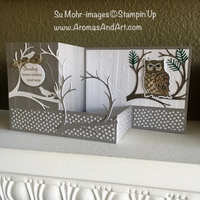 By Su Mohr for Pals Oct 2018 Blog Hop; Click READ to go to my blog for details! Featuring: wicked folds, double z fold card, Still Night stamp set, Night Owl die set, Stampin' Blends; #wickedfolds #palsoctober2018bloghop #stillnight #nightowl #halloweencards #handmadecards #stampinup #fancyfolds