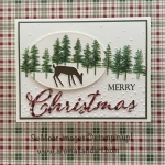 Waterfront Christmas Card~What Will You Stamp?