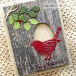 Best Birds Christmas Cardinal Finds Mistletoe