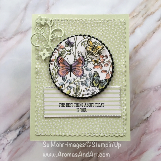 By Su Mohr for Kylie's Top Ten Blog Hop; Click READ or Visit to go to my blog for details! Featuring: Well Said Bundle, Butterfly Duet Punch, Botanical Butterfly DSP, Layering Circles Dies, be Mine Stitched Dies, Rectangle Stitched Dies, Subtles 6X6 DSP; #thankyoucards #butterflypunch #butterflies #friendshipcards #birthdaycards #handmadecards #butterflygala #stampinup #kyliestoptenbloghop