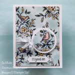 By Su Mohr for cts; Click READ or VISIT to go to my blog for details! Featuring: Bird Ballad DSP, Under My Umbrella Stamp Set, Crinkled Seam Binding Ribbon, Ornate Frames Dies, Layering Circles Dies, Stitched Rectangles Dies; #